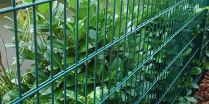 Doppelstabmattenzäune für den Garten